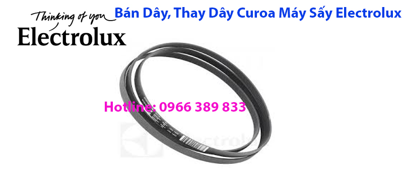 ban day curoa may say electrolux
